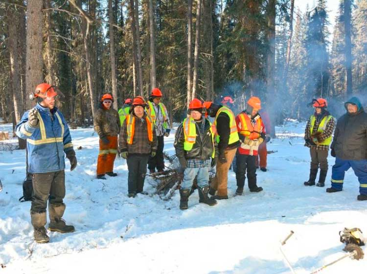 Canada Invests in Indigenous Participation in the Forest Sector